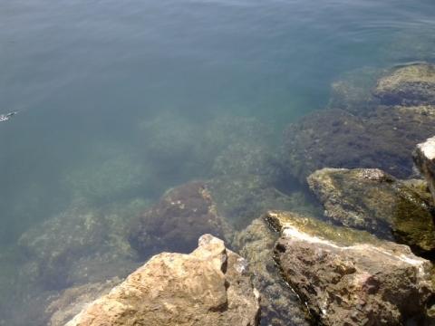 estado del mar
