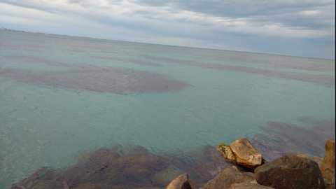 paisaje del mar